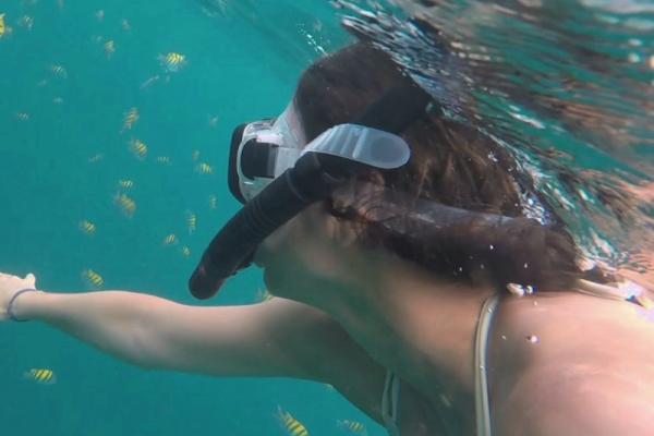 Snorkel Hotel Playa Reina