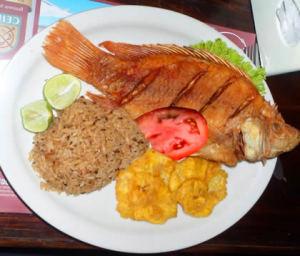 comida-fish